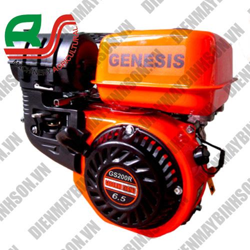Động cơ xăng Genesis GS200R