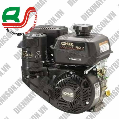 Động cơ xăng Kohler CH440